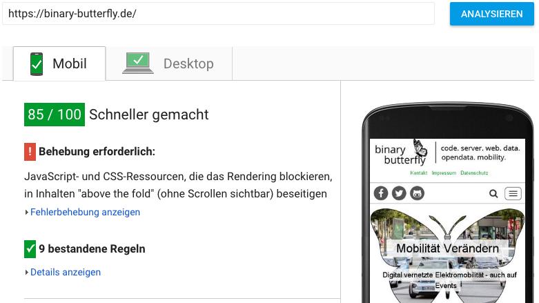 Der PageSpeed von binary-butterfly.de: Ohne volle Punktzahl perfekt.